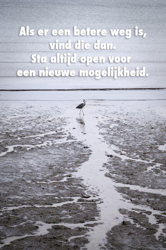 Als Er Een Betere Weg Is….