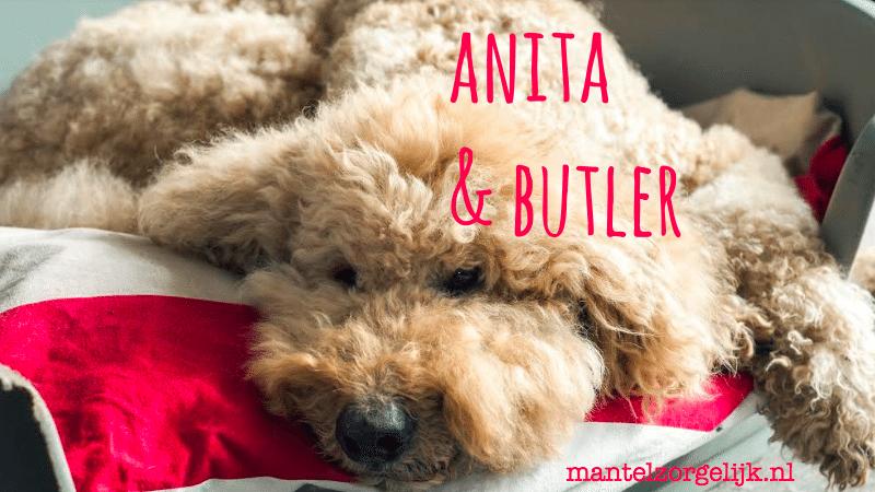 Butler De Mantelzorg4voeter: Jarig!