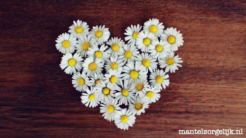 Kennis Is Liefde #delenhelpt